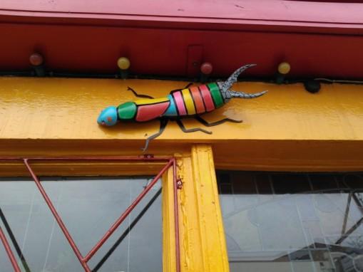 Bedminster bugs Bristol (1)
