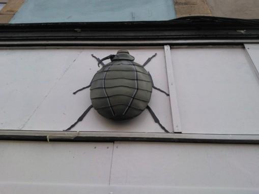 Bedminster bugs Bristol (10)