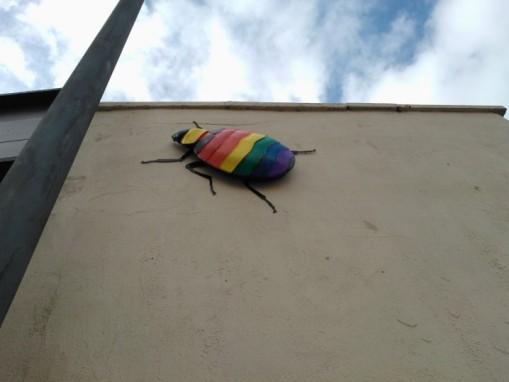 Bedminster bugs Bristol (20)