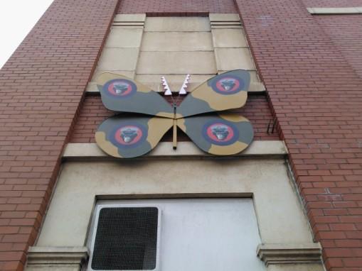 Bedminster bugs Bristol (33)